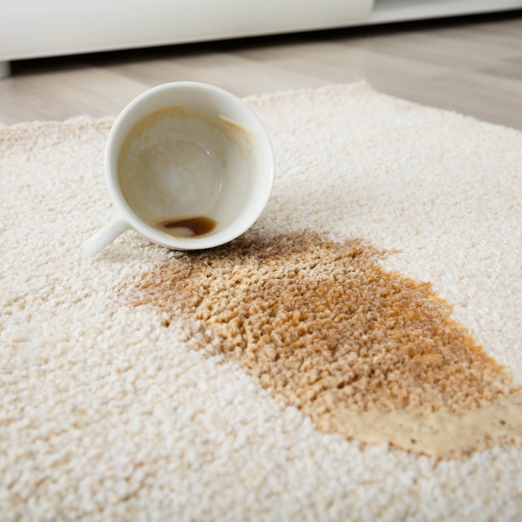 Professional Rug Cleaning | Great Western Flooring Co